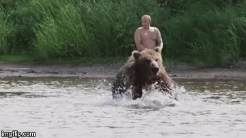 Putin Horse Gifs Tenor