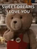 Sweet Dreams ILove You Ted GIF - SweetDreamsILoveYou Ted Kiss GIFs