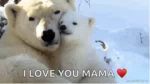 ILove You So Much Snuggle GIF - ILoveYouSoMuch ILoveYou Snuggle GIFs