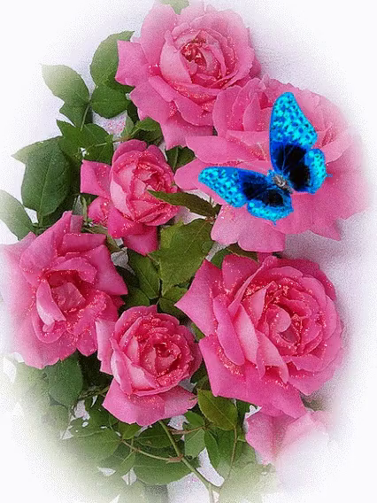 Animated pink roses gifs tenor pink roses gif pink roses blue gifs mightylinksfo