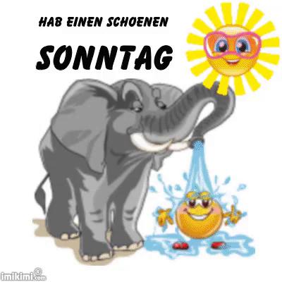 Beste Hab Einen Schönen Sonntag GIF - Summer Elephant - Discover & Share SO-77