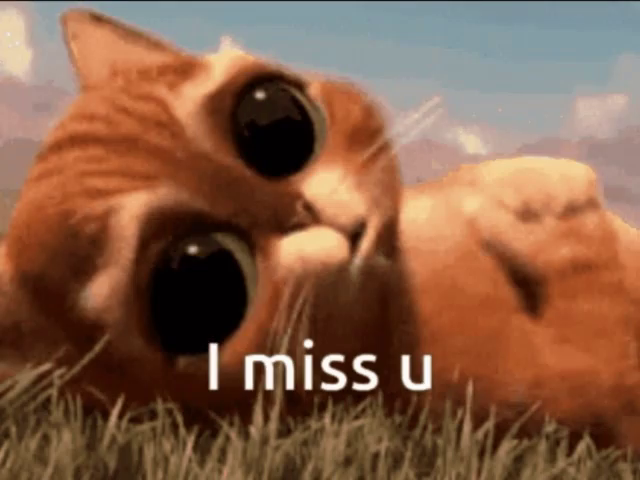 I Miss You GIFs | Tenor