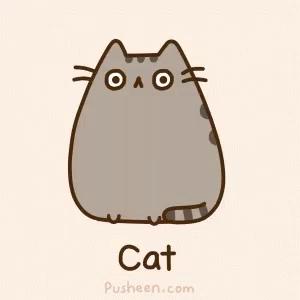 Pusheen Cat Wallpaper Gifs Tenor