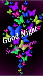 Good Night Sweet Dreams GIF - GoodNight SweetDreams Greeting GIFs