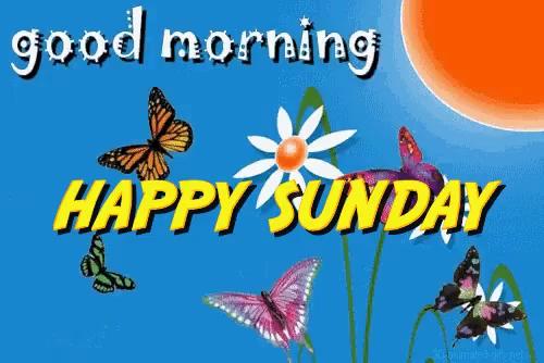 Good Morning Sunday Gifs Tenor