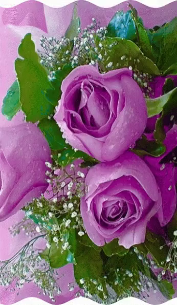Animated pink roses gifs tenor pink roses gif pink roses reflection gifs mightylinksfo