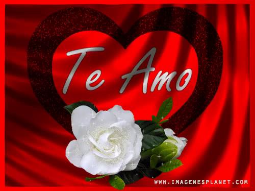 Te Amo Rosas Romanticas Gif Rosasromanticas Teamo Rosas Discover Share Gifs