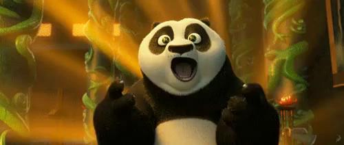 Kung Fu Panda GIFs | Tenor