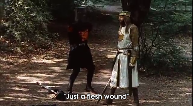 raw monty python and the holy grail just a flesh wound gif