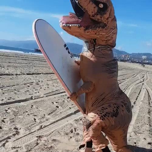 Surfboard Gifs Tenor
