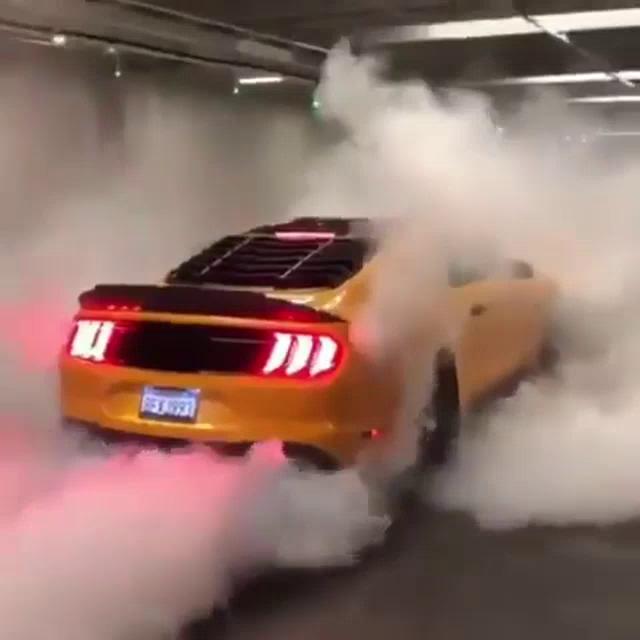 Mustang Gifs Tenor