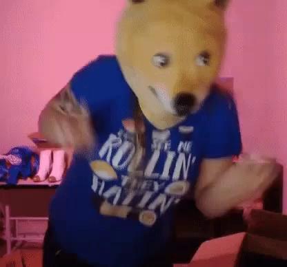 Doge Meme GIF - Doge Meme Streamer - Discover & Share GIFs