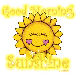 Good Morning Sunshine GIFs | Tenor