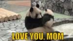Mothers Day Love You Mom GIF - MothersDay LoveYouMom Panda GIFs