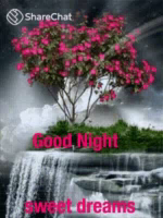 Good Night Sweet Dreams GIF - GoodNight SweetDreams Sharechat GIFs