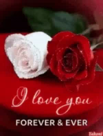 ILove You Forever And Ever GIF - ILoveYou ForeverAndEver Roses GIFs