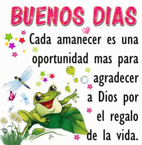 Frog Buenos Dias GIF - Frog BuenosDias GIFs