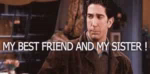 Your Sister GIF - Friends Bestfriend Sister GIFs