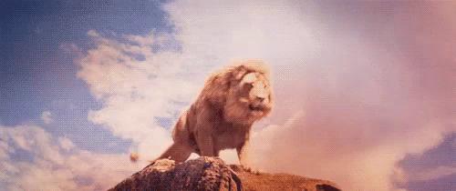 Lion Roar GIFs