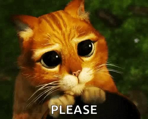 Bildergebnis für please shrek cat