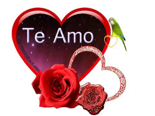 Bom Dia Amor Gifs Tenor