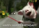 Happy Pig GIF - Happy Pig Car GIFs