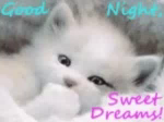 Sweet Dreams GIF - SweetDreams GIFs
