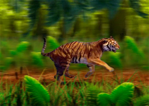 Tiger Forest Gif Tiger Forest Run Discover Share Gifs