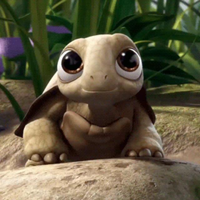 Cute Turtle Gifs Tenor