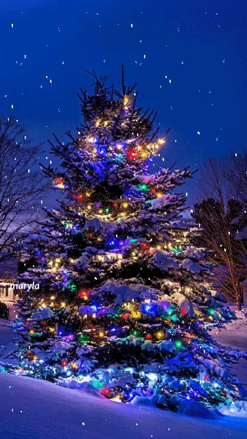 Christmas Tree Gifs Tenor