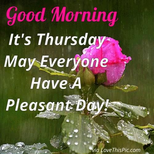 Good Morning Thursday Gifs Tenor
