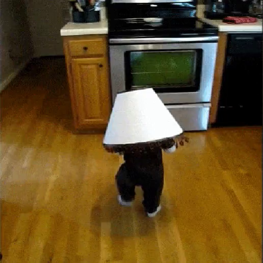 Lamp Kid GIF   Lamp Kid GIFs