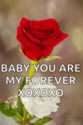 Baby You Are My Forever GIF - BabyYouAreMyForever MyForever GIFs