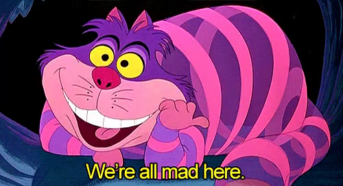 We're All Mad Here GIFs | Tenor