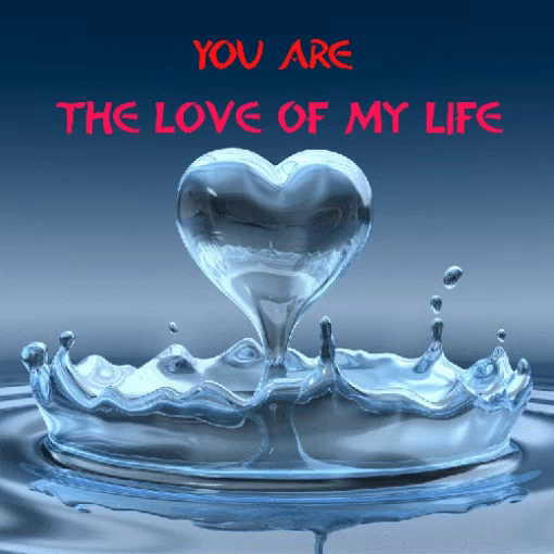you my life you my love
