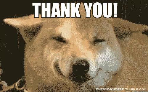 Eiber: Funny Thank You Dog Meme
