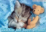 Good Night Sweet Drems GIF - GoodNight SweetDrems SleepTight GIFs