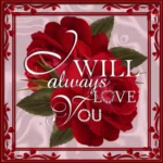 Love You IWill Always Love You GIF - LoveYou IWillAlwaysLoveYou RedRose GIFs