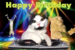 Happy Birthday DJ GIF - HappyBirthday DJ Cat GIFs