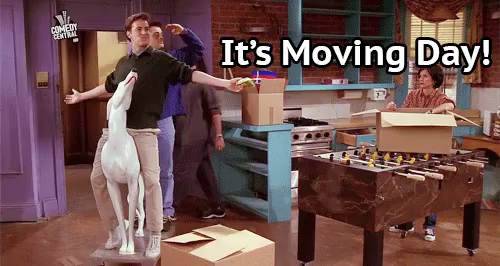 Moving Day Gifs Tenor