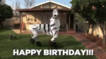 Birthday Happy Birthday GIF - Birthday HappyBirthday Happy GIFs