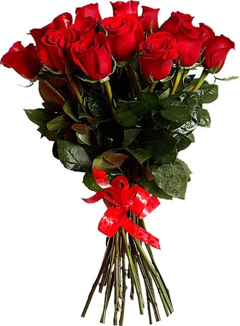 roses gifs tenor