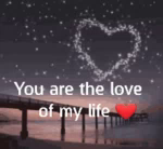 Forever You Are The Love Of My Life GIF - Forever YouAreTheLoveOfMyLife Heart GIFs