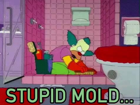 Mold GIFs | Tenor