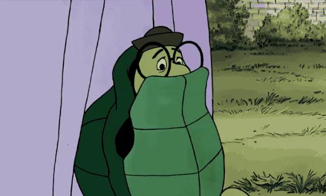 Turtle Shell Gifs Tenor