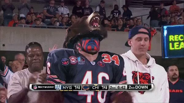 Bears Fan GIF - Bears ChicagoBears Costume GIFs  sc 1 st  Tenor & Chicago Bears GIFs | Tenor