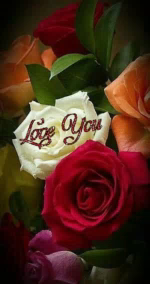Love You Rose GIF - LoveYou Rose Flower GIFs